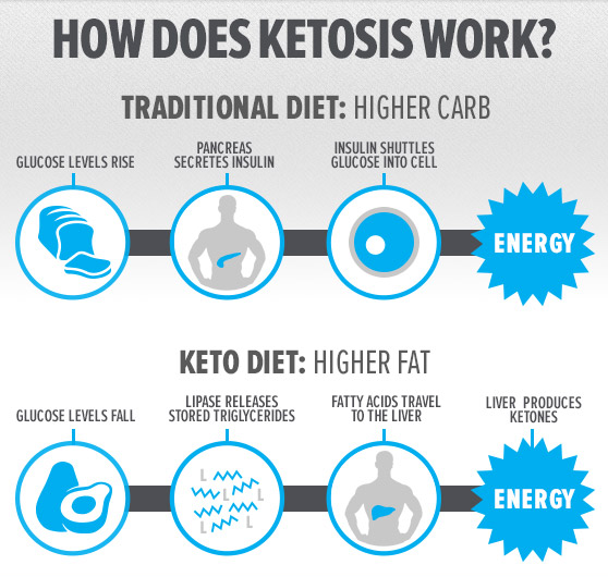 Pruvit Keto and the ketogenic diet